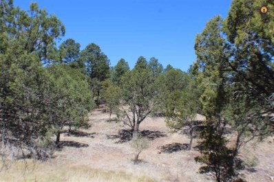 Xx Main Street, Pinos Altos, NM 88053 - #: 20181807