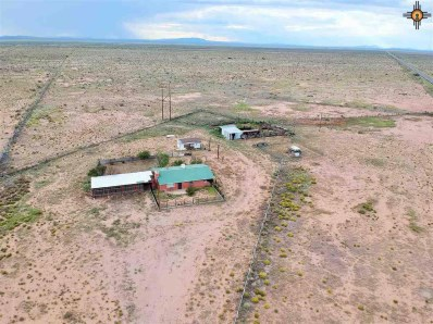 13000 Silver City Hwy Nw, Deming, NM 88030 - #: 20182720