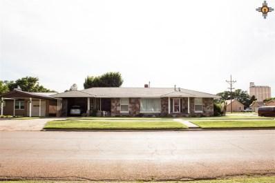 300 3rd Street, Farwell, TX, NM 79325 - #: 20182965