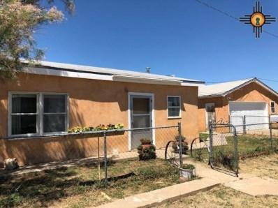 245 E 10th Street, Raton, NM 87740 - #: 20183045