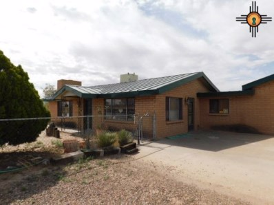 1540 Acoma Rd Sw, Deming, NM 88030 - #: 20183115