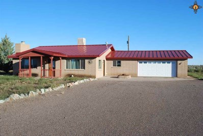 1585 Acoma Rd Sw, Deming, NM 88030 - #: 20183383