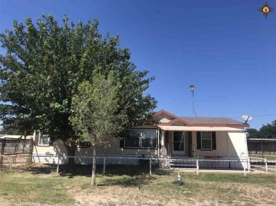 1009 N Nevada Ave., Lake Arthur, NM 88253 - #: 20184457