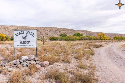 648 San Miguel, Truth Or Consequences, NM 88350 - #: 20185609