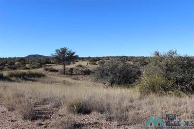 64 Old Ranch Rd, Silver City, NM 88061 - #: 20185684
