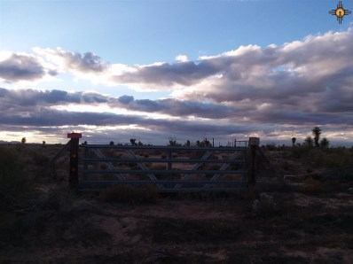13620 Lucca Rd Sw, Deming, NM 88030 - #: 20185781