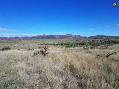 32 Mesa Trail, Arenas Valley, NM 88061 - #: 20190058