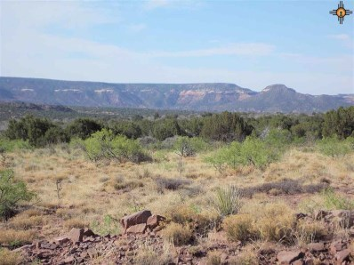 Tract 59 Bull Canyon Ranches, Newkirk, NM 88417 - #: 20190062