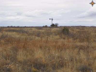 River Ranches Road, Fort Sumner, NM 88119 - #: 20190704