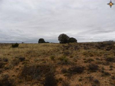 River Ranches Road, Fort Sumner, NM 88119 - #: 20190705