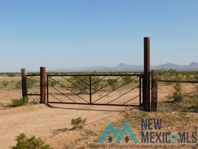288 Hwy 70, Lordsburg, NM 88045 - #: 20191702