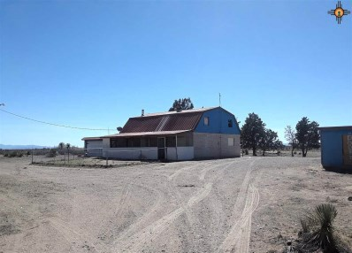 13060 Calle De Sierra, Deming, NM 88030 - #: 20191968