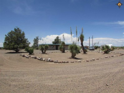 1605 Hondale Rd., Sw, Deming, NM 88030 - #: 20193361