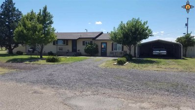 610 Priceton, Clayton, NM 88415 - #: 20193959
