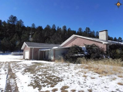 2726 Us Highway 82, Mayhill, NM 88339 - #: 20194432
