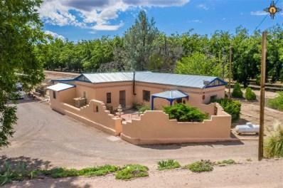1150 Railroad Road, Las Cruces, NM 87937 - #: 20194693