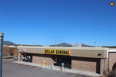 101 N Rosedale Road, Silver City, NM 88061 - #: 20195656