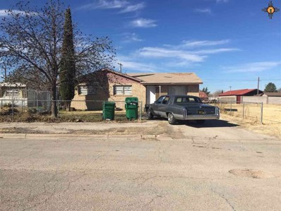 709 N East Street, Lovington, NM 88260 - #: 20196059