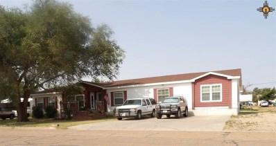208 E 7th Street, Farwell, TX, TX 79325 - #: 20200299