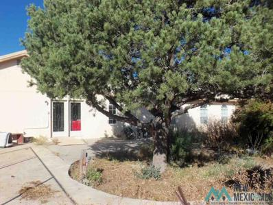 19 Offutt Canyon, Silver City, NM 88061 - #: 20201962