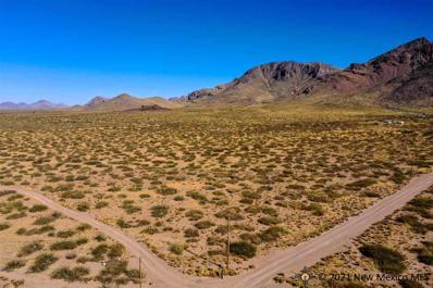 Lot 3 Conejo Road, Rodeo, NM 88056 - #: 20205479