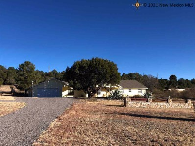 3980 Pitchfork Ranch Rd, Silver City, NM 88061 - #: 20205647