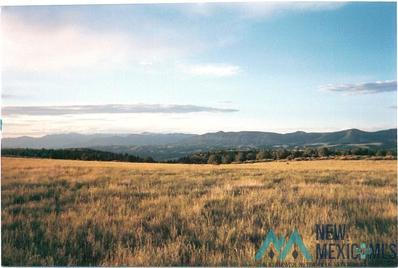 1221 Bear Mountain Road Unit Steambo>, Silver City, NM 88061 - #: 20205785