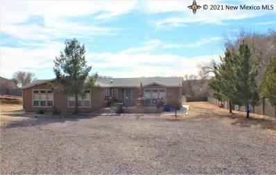 900 Pine Street, Silver City, NM 88061 - #: 20210062