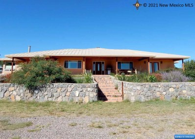 26 Xyz Ranch Rd, Silver City, NM 88061 - #: 20210696