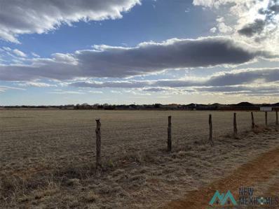 2500 Wilhite, Clovis, NM 88101 - #: 20211365