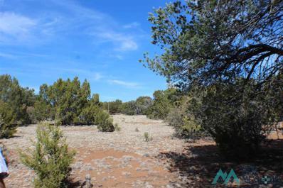 Xx Hideaway Trail, Silver City, NM 88061 - #: 20211683