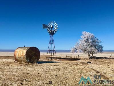Abbott New Mexico, Springer, NM 87747 - #: 20211816