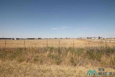 Curry Road D, Texico, NM 88135 - #: 20212049