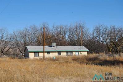 13496 Highway 187, Arrey, NM 87930 - #: 20212693