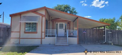 612 Florence, Texico, NM 88135 - #: 20214103