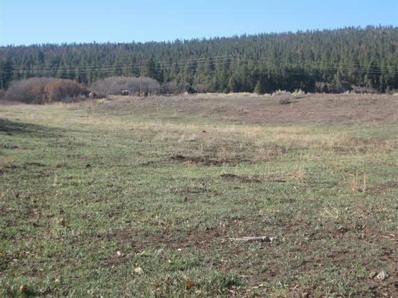 0 County Road 419, Tract A UNIT Galliona, Gallina, NM 87017 - #: 201301960