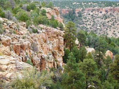 Ranch, Wagon Mound, NM 87752 - #: 201505258