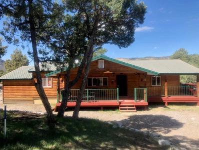 12 South Leaning Pine Dr UNIT 12, Los Ojos, NM 87551 - #: 201901843