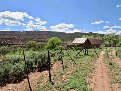 0 Montoya Ranch Cr 423, Coyote, NM 87012 - #: 201902028