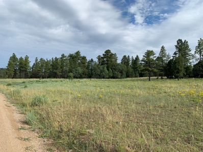 137 Forest Service Rd 137, Canjilon, NM 87515 - #: 201903562