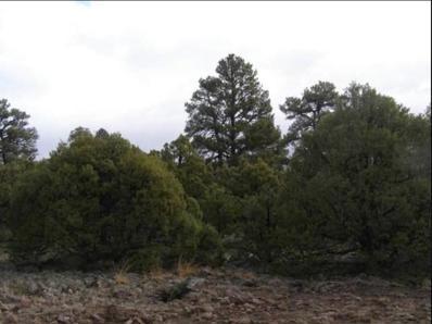 21 Vista Del Heron - Camino Thomas, Rutheron, NM 87551 - #: 201903995