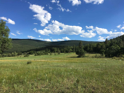 Upper Morphy Valley Road, Mora, NM 97732 - #: 202003227