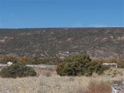 Lot 5 Of Fnrt, Los Luceros, NM 87582 - #: 202004030