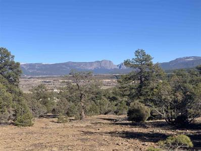 13 Camino Thomas, Los Ojos, NM 87551 - #: 202004876