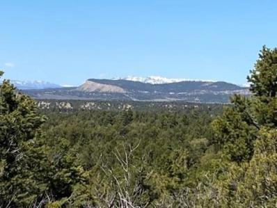 County Road 312, Cebolla, NM 87518 - #: 202101473