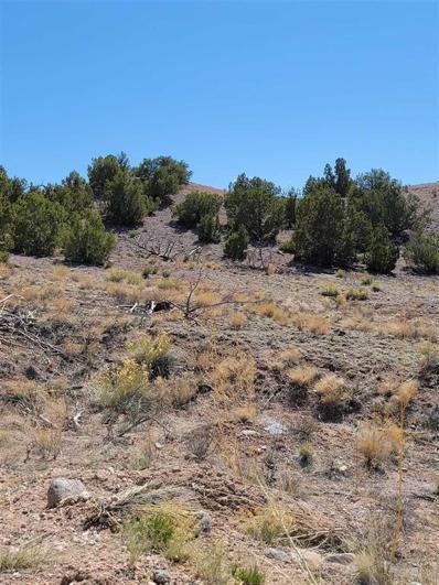 2 Ray Road, Ojo Caliente, NM 87549 - #: 202101628