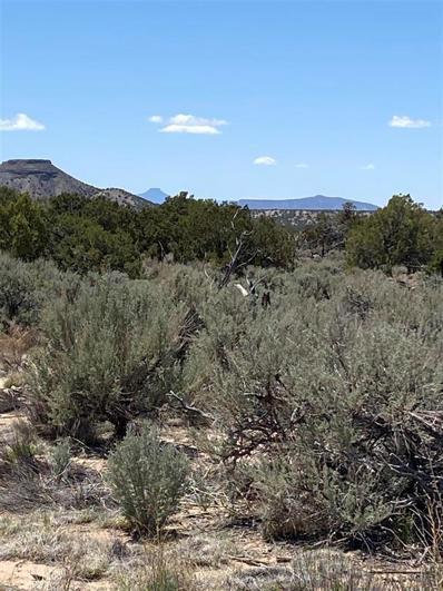 3 Highway 285 Unit 1, Ojo Caliente, NM 87549 - #: 202102200