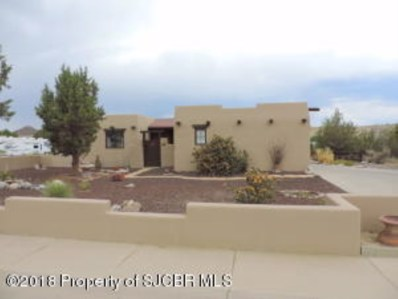 707 Little Rabbit Drive, Aztec, NM 87410 - #: 18-1217