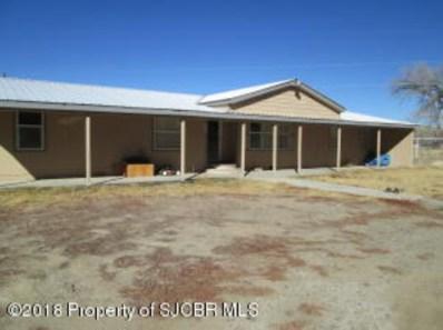 83 Road 4380, Blanco, NM 87412 - #: 18-152