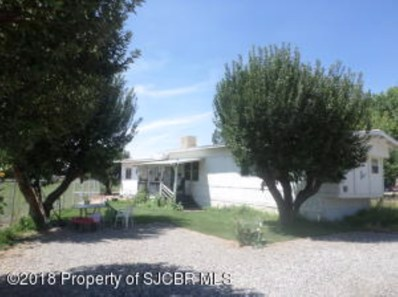 11 Road 2965, Aztec, NM 87410 - #: 18-1602